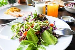Salade végétale dans l'ensemble de petit déjeuner de matin Images libres de droits