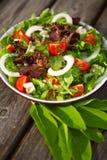 Salade végétale de plaque. Image libre de droits