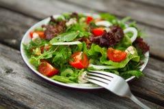 Salade végétale de plaque Photographie stock libre de droits