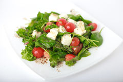 Salade végétale italienne photographie stock
