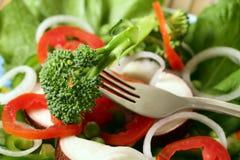 Salade végétarienne photographie stock libre de droits