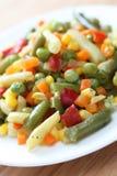 Salade végétarienne Image libre de droits