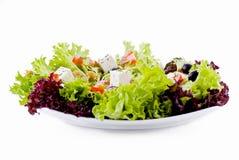 Salade végétarienne fraîche images stock