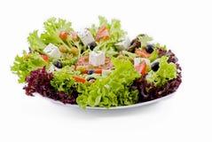 Salade végétarienne fraîche image stock