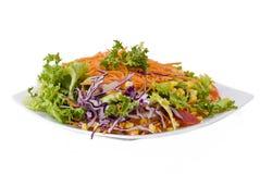 Salade végétarienne fraîche images libres de droits