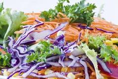 Salade végétarienne fraîche photographie stock libre de droits