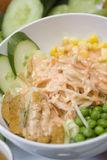 Salade van de dag royalty-vrije stock afbeelding