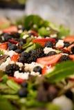 Salade van greens Royalty-vrije Stock Foto