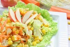 Salade van groenten en appelen royalty-vrije stock fotografie