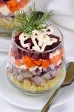 Salade van haringen met groenten royalty-vrije stock foto