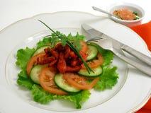 Salade van kip met tandoorikruiden Royalty-vrije Stock Foto