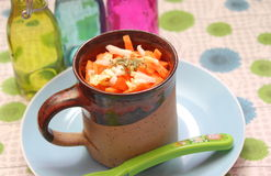 Salade van kool Royalty-vrije Stock Foto's
