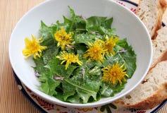 Salade van paardebloem stock fotografie