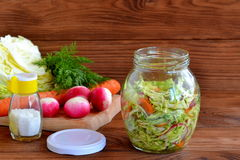 Salade van radijs, wortelen, kool, olijfolie, zout en dille Stock Foto's