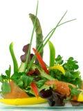 Salade van rauwe groenten en asperge 2 Royalty-vrije Stock Afbeeldingen