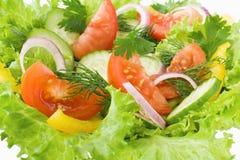 Salade van tomaat, komkommer en sla Royalty-vrije Stock Afbeeldingen