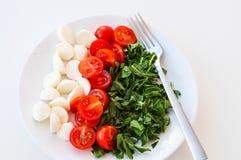 Salade van tomaat, mozarella en rucola Stock Foto