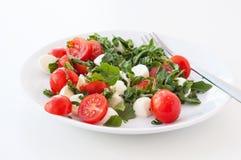 Salade van tomaat, mozarella en rucola stock foto's