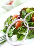 Salade van verse groenten. royalty-vrije stock foto