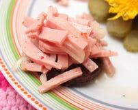 Salade van worst met brood Royalty-vrije Stock Afbeelding