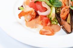 Salade van zeevruchten en een zalm Royalty-vrije Stock Afbeeldingen
