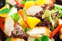 Salade. Verse groenten met kip Stock Afbeelding