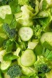 Salade verte _1 Photos libres de droits