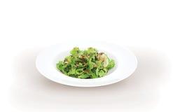 Salade verte Photographie stock libre de droits