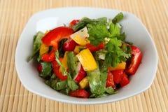 Salade verte _1 Image stock
