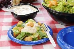 Salade verte avec des croûtons sur une table de pique-nique photos stock