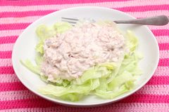 Salade verte avec des thons Photo libre de droits