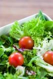 Salade verte avec des tomates Photo stock