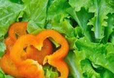 Salade verte avec le paprika Photographie stock libre de droits