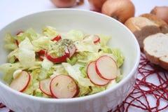 Salade verte avec le radis Photo libre de droits
