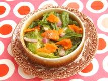 Salade verte avec les poissons saumonés Image stock