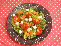 Salade verte avec les poissons saumonés Images stock