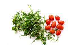 Salade verte d'arugula et tomates rouges sur le fond blanc Photographie stock libre de droits
