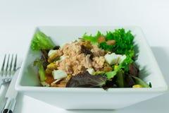 Salade verte dans la cuvette avec le fond blanc Photographie stock