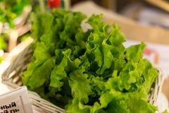 Salade verte de nourriture de Vegan Images libres de droits