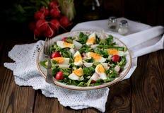 Salade verte de ressort de radis organique, d'ail sauvage avec des oeufs à la coque, d'huile d'olive et de parmesan images stock