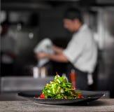Salade verte de ressort frais Photo libre de droits
