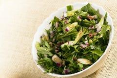 Salade verte de Vegan photographie stock libre de droits