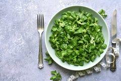 Salade verte et bande saines de mesure Vue supérieure avec l'espace de copie photo libre de droits