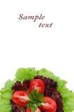 Salade verte et tomate Photographie stock