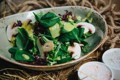 Salade verte fraîche Photos stock