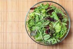 Salade verte fraîche avec les épinards, l'arugula, l'aine de ROM et la laitue Photo stock