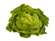 Salade verte fraîche - laitue, d'isolement Photographie stock