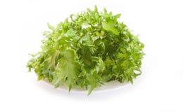 Salade verte fra?che de laitue sur le fond blanc images stock
