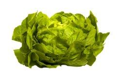 Salade verte - laitue, d'isolement sur le blanc Photographie stock libre de droits