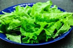 Salade verte sur le fond rustique, régime de fraîcheur images stock